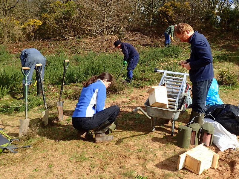 Preparing Nest Boxes
