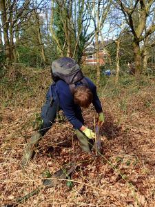 Adam Planting Tree