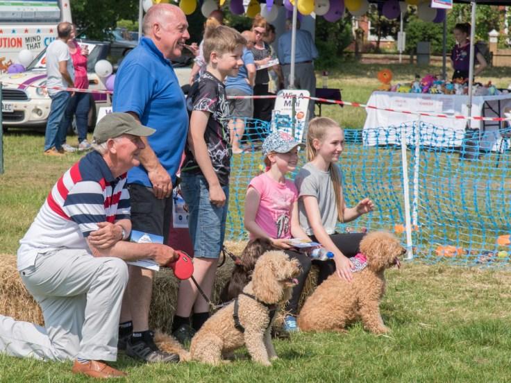 Dog Show Winners