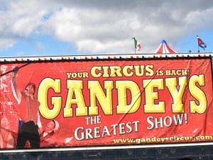 Gandeys Banner