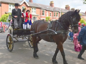 May Day Horse Carriage