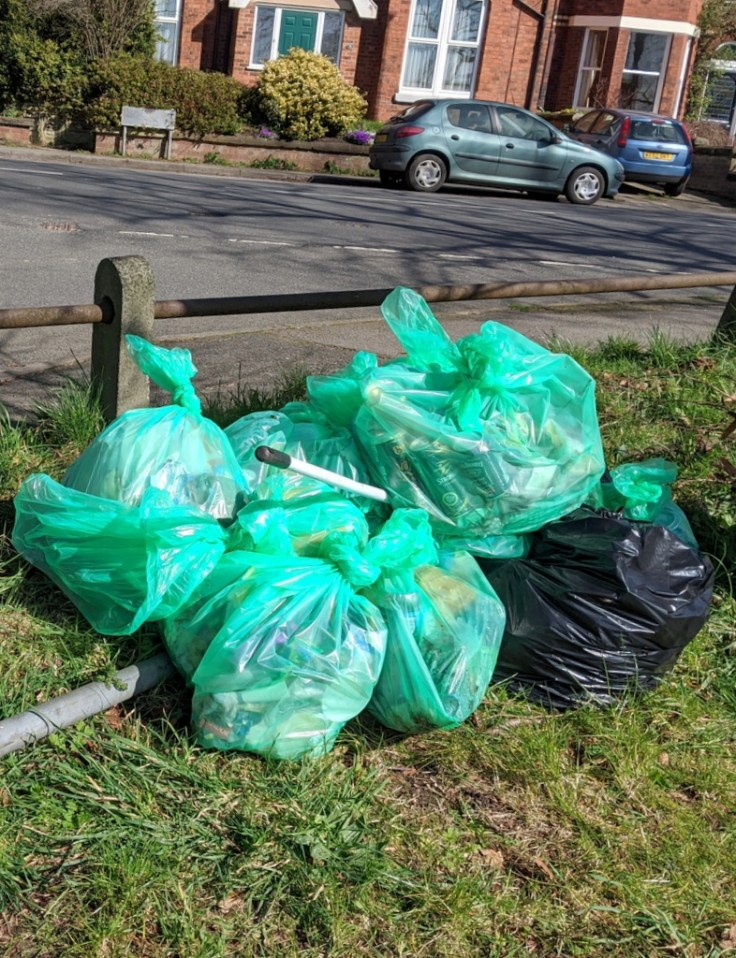Tidy Pile of Litter Bags