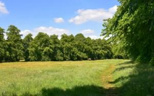 Little Heath Path