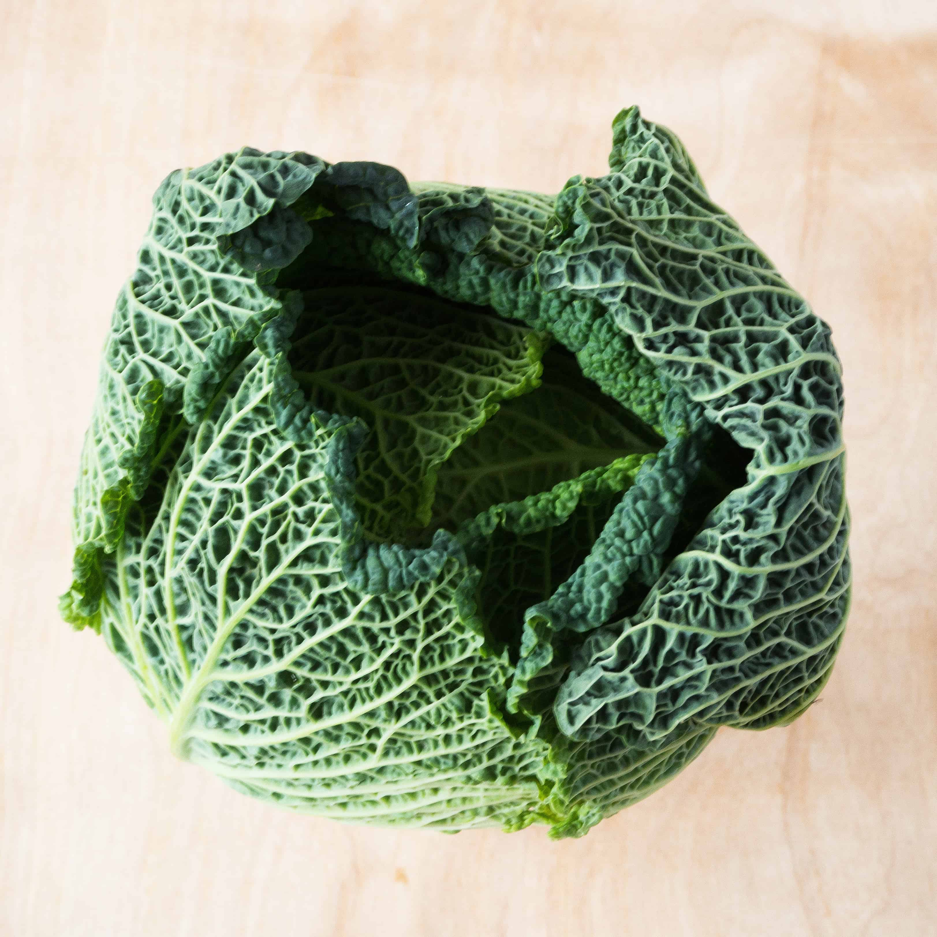 Savoy Cabbage - December Seasonal Produce