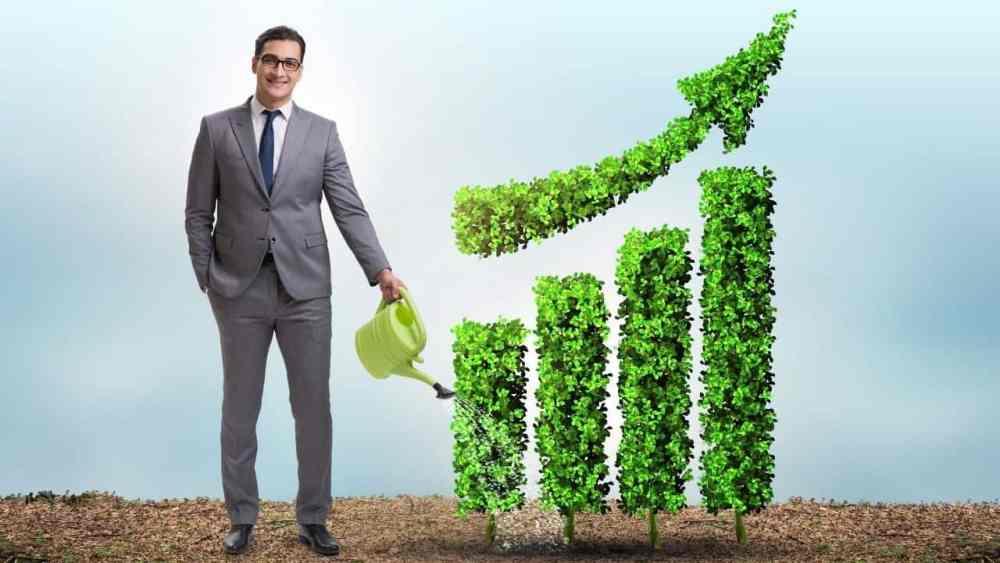 Bæredygtig investering gjort nemt