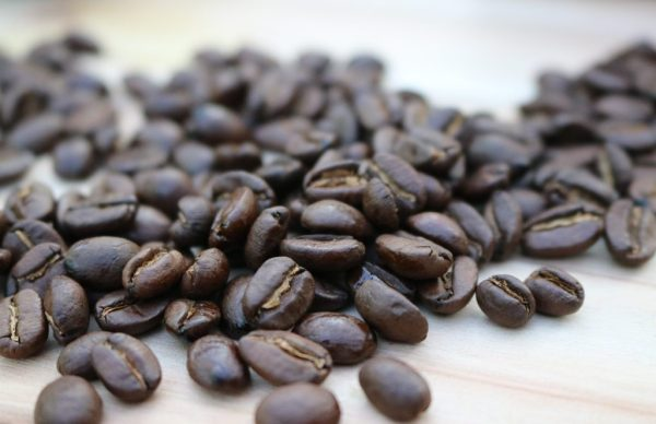 Panda-Coffee-Berlin-Pacha-Mama-4