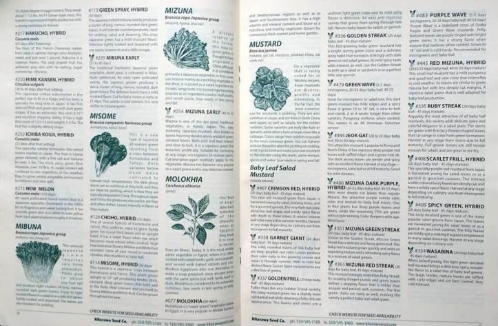 Kitazawa catalogue spread.