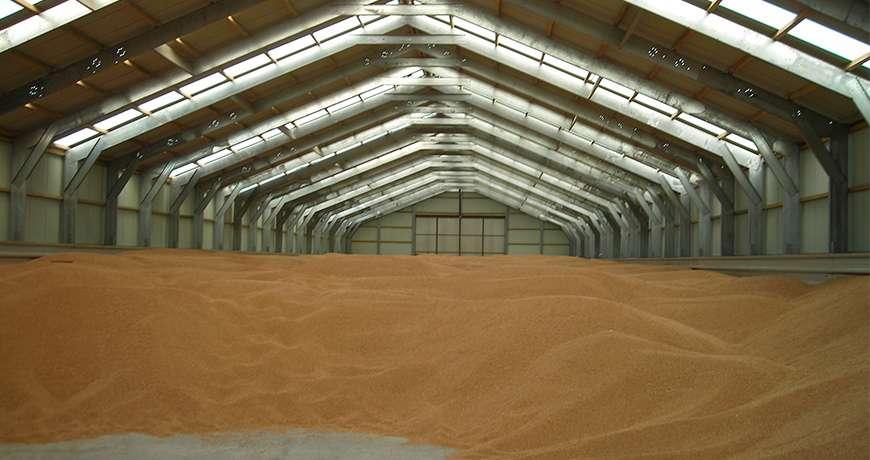 Bulk Storage Agriculture Steel Structures Frisomatnl