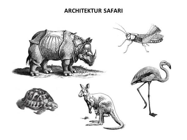 Cornelia Faisst - PechaKucha - Architektur Safari