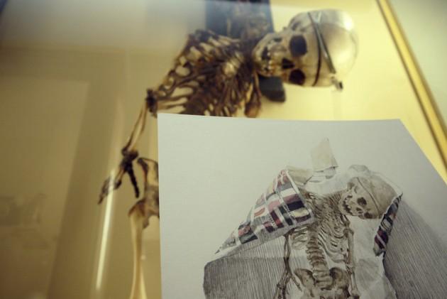 Museo delle Cere Anatomiche, Daniel Muñoz