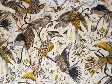 Audubon ClarkeS