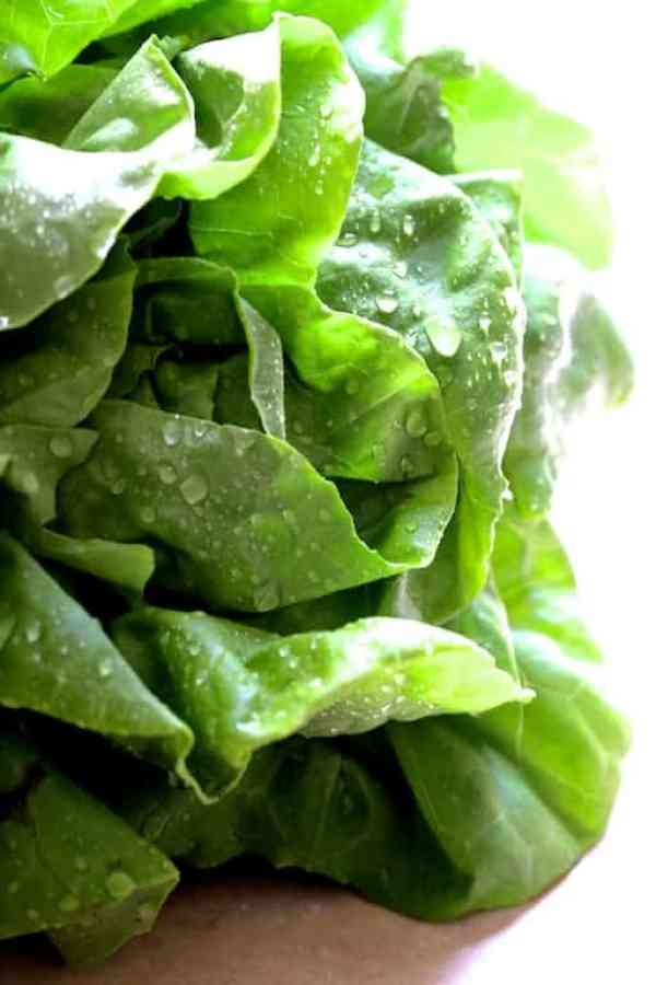 Turkish Turkey Meatball Lettuce Wraps with Tzatziki - Close-up photo of fresh lettuce that has been freshly washed