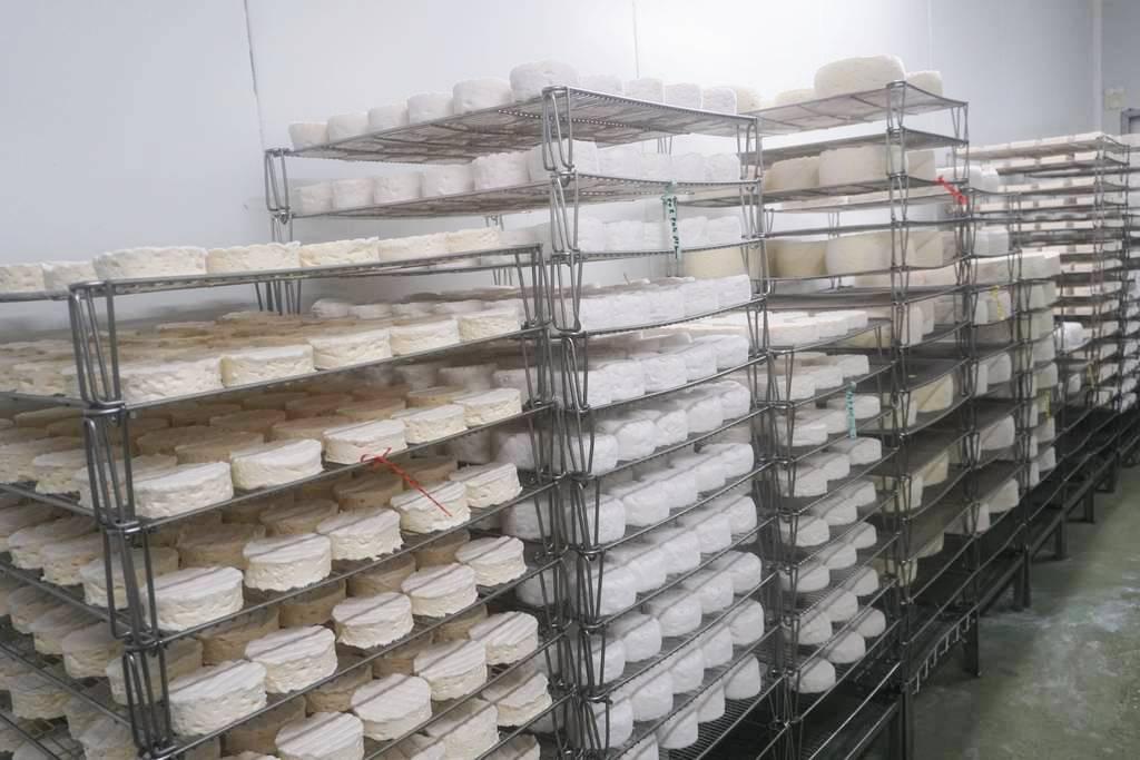 Affinage de fromage