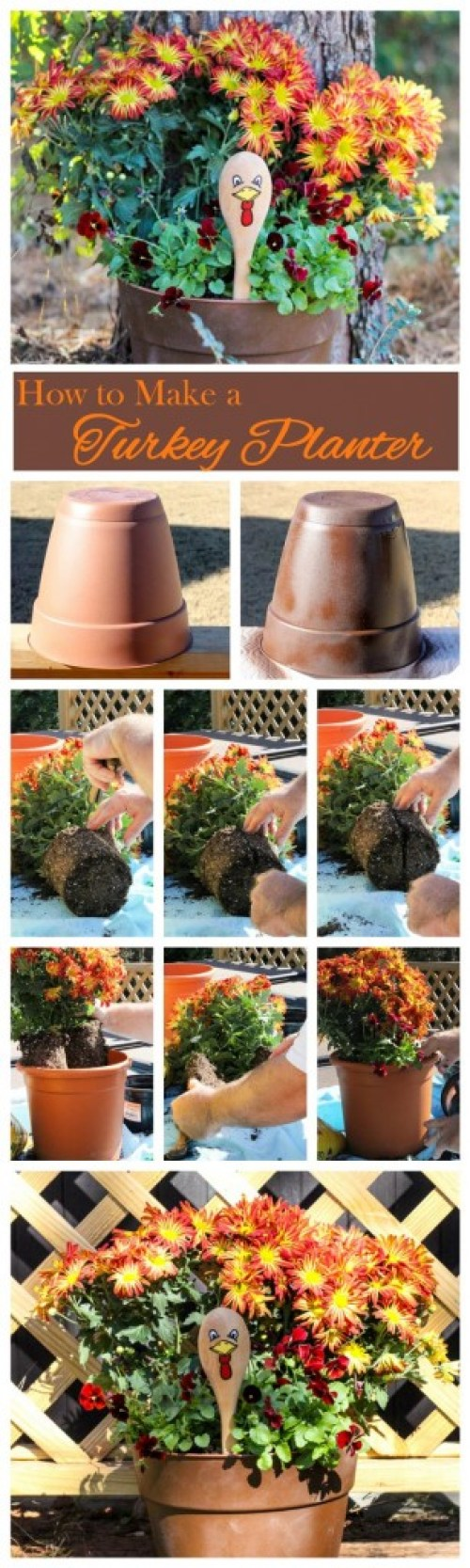 How-to-Make-a-Turkey-Planter-2