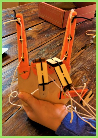 My son learns about biomechanical engineering and simple machines while building his very own mechanical hand!