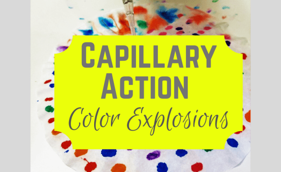 Use capillary action to create beautiful fireworks at home! Using common supplies at home, watch a colors explode using water!