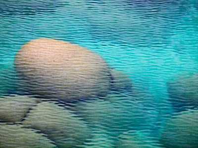 Underwater Boulders At Sand Harbor