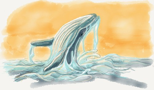 Breaching Whale drawn in Paper by FiftyThree.com