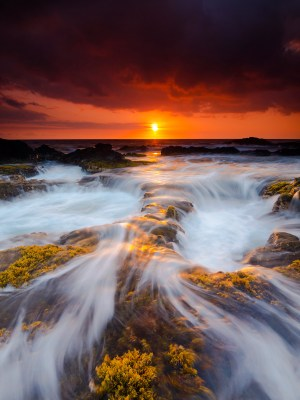 Waves rush through the blooming seaweed along the terrain of the Keahole coastline