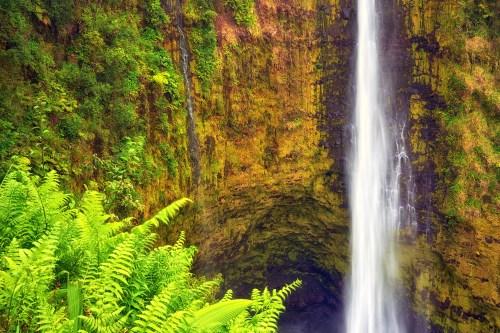 An intimate view of the amazing Akaka Falls, Hawaii