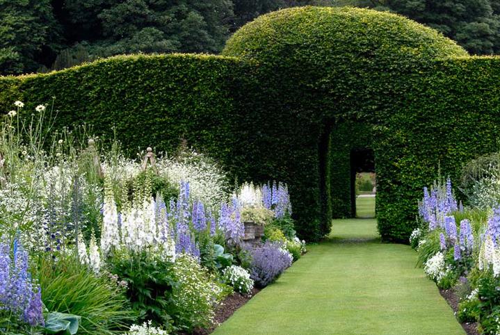 Blue and White Garden Design Ideas - Gardening @ From ... on White Patio Ideas id=45282