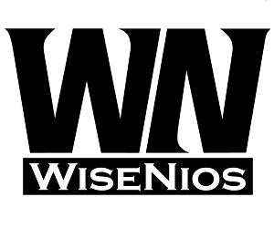 WiseNios LLC Херсон, Украина www.wiseniosllc.business.site
