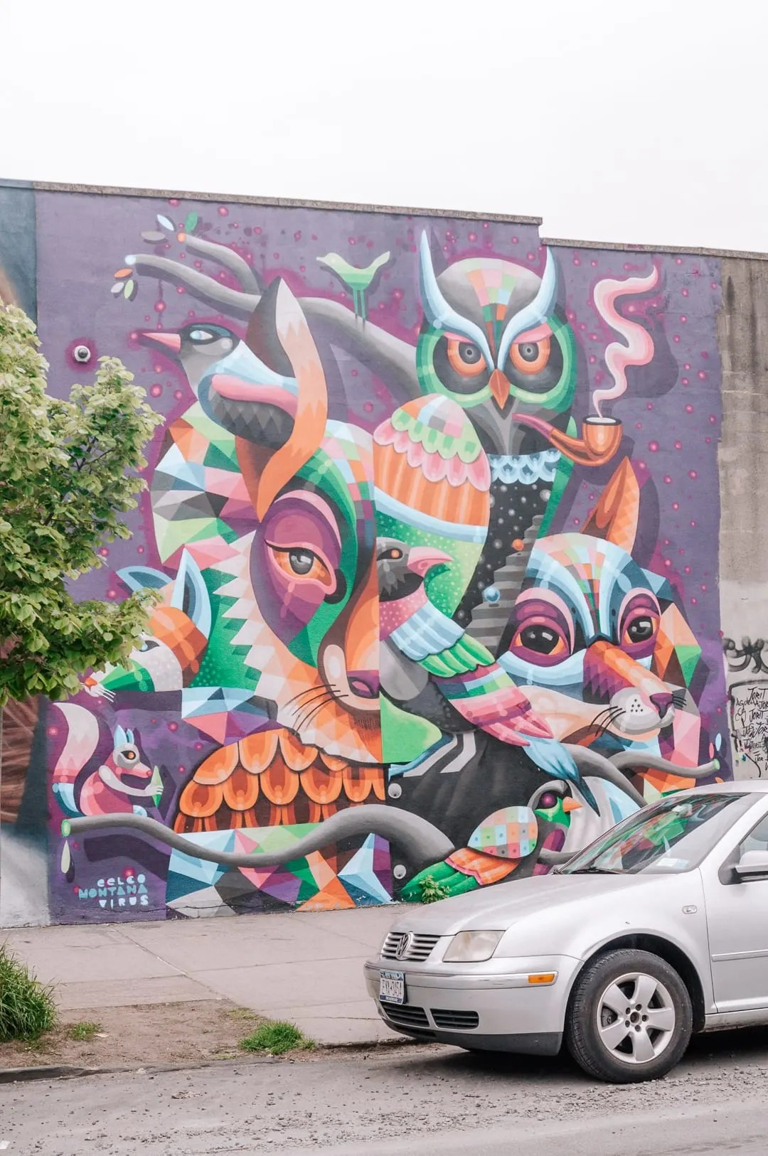 Local Insight: Where to See Bushwick Street Art and Graffiti