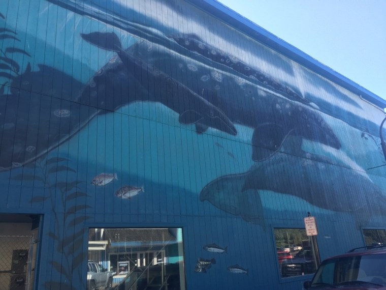 Cool mural in Newport, Oregon, just a neighbor town to Waldport.