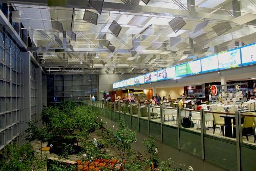 Terminal 3 in Changi International Airport, Singapore.