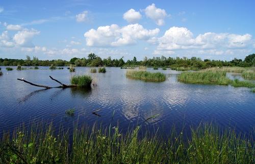Brenne Natural Regional Parc