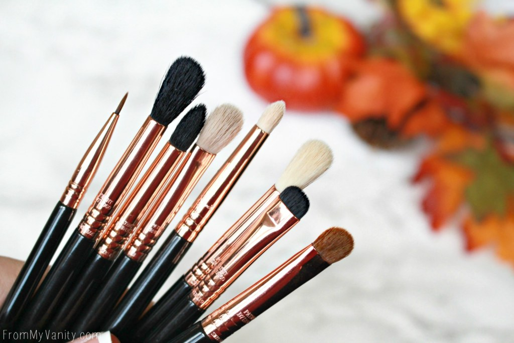 Sigma Beauty Ultimate Copper Eye Brush Set | Review
