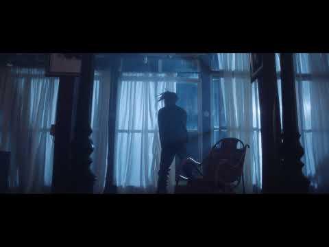 VIDEO: Fireboy DML – Airplane Mode