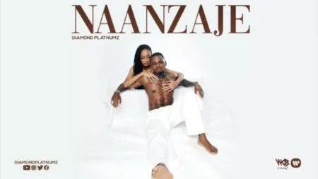 image of Diamond Platnumz Naanzaje