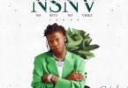 Seyi Vibez – NSNV (No Seyi No Vibez) EP