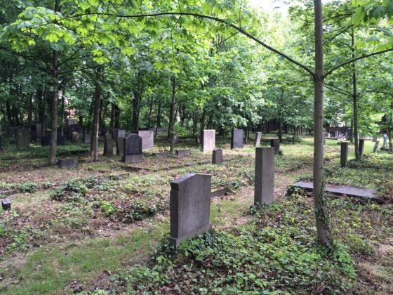 Jewish cemetery in Gliwice