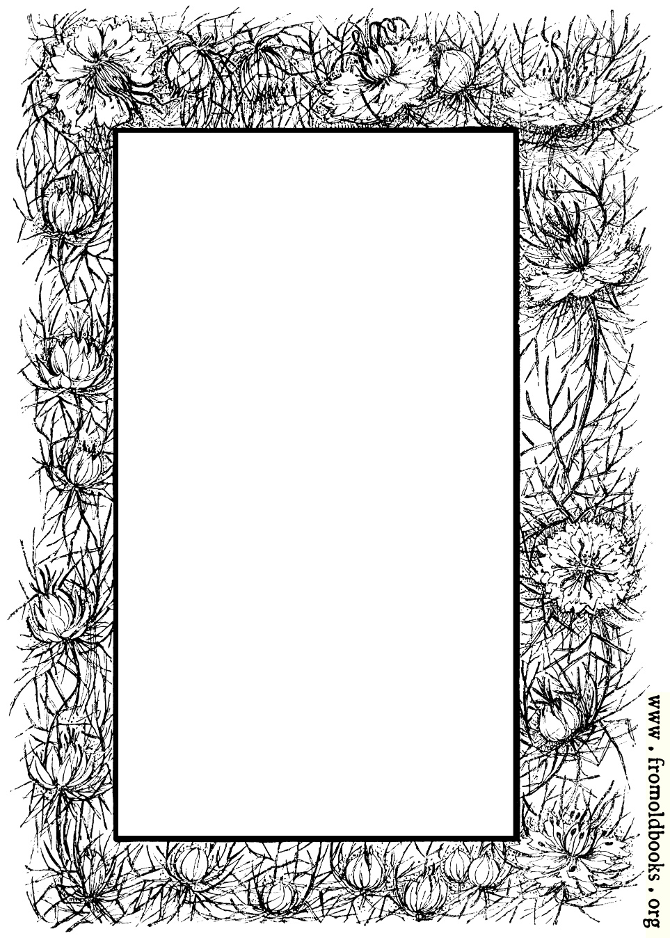 Border Of Flowers And Thorns