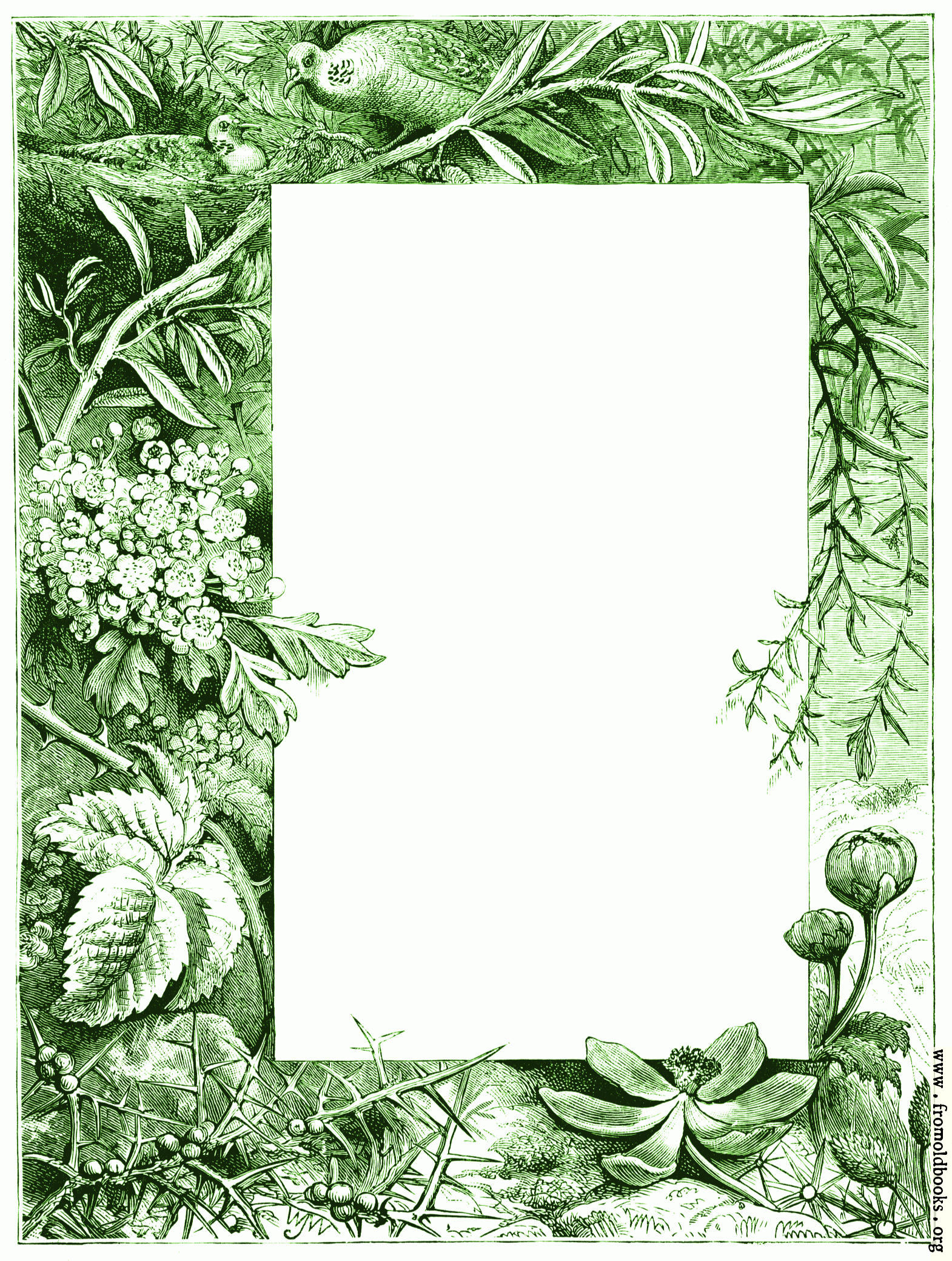 Business Frames Green Borders Picture