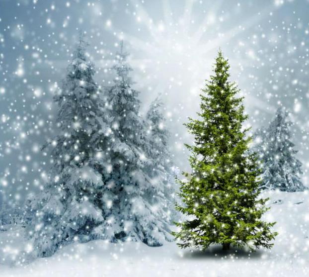 3x5ft-sunshine-winter-snowy-iced-green-font-b-pine-b-font-font-b-trees-b-font