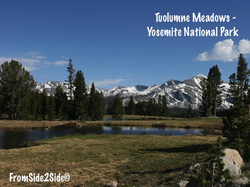 Tuolumne Meadows - Yosemite