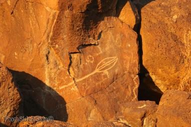 Petroglyph National Monument 23