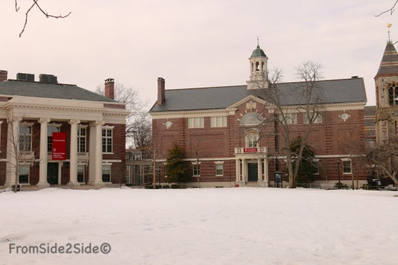 Harvard 4