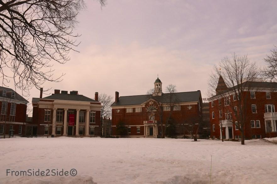 Harvard 5