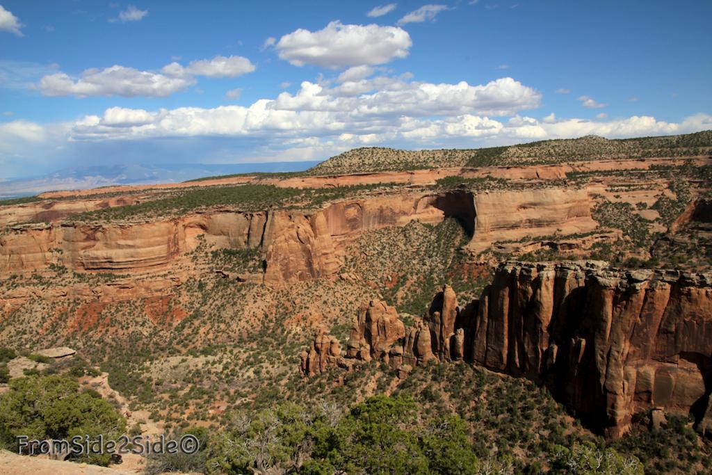 Colorado NM 11