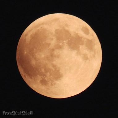 eclipse lune 2015 2