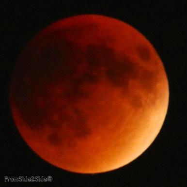 eclipse lune 2015 44