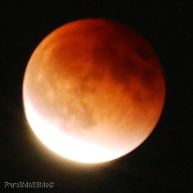 eclipse lune 2015 48