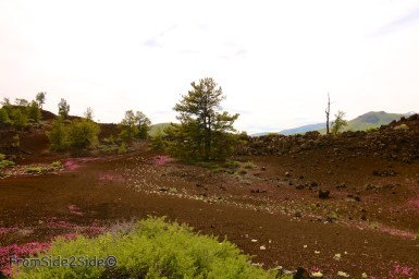 craters of the moon 4
