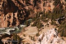 Grand Canyon Yellowstone 10