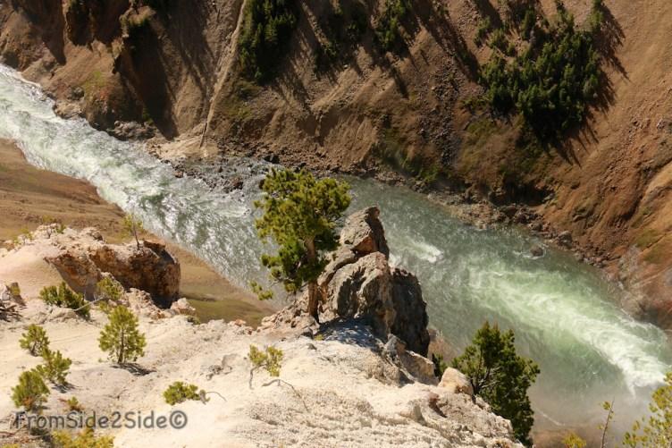 Grand Canyon Yellowstone 20