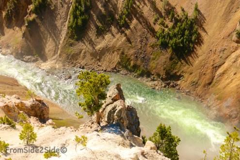 Grand Canyon Yellowstone 22
